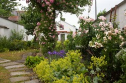 20170625 Tag der offenen Gartentür (1 von 38)